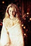 Fairy украшение Стоковое Изображение
