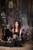 fairy унылый чемодан Стоковое Изображение RF
