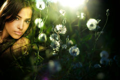 Free Fairy Royalty Free Stock Photo - 10682885