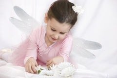 Fairy Stock Images