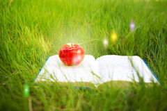 Fairy book and apple Stock Photo