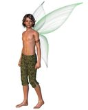 Fairy Boy isolated on a white background. Fairy Boy with green gossamer wings, 3d digitally rendered illustration Royalty Free Stock Photo