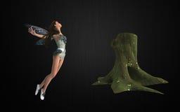 Fairy bundle Stock Photography