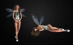 Fairy bundle Stock Image