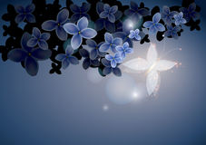 Fairy butterfly in blue flowers Stock Image