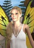 Fairy Butterfly Stock Photos