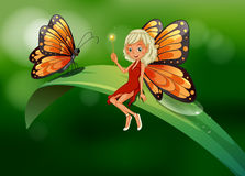 A fairy and a butterfly at the top of a long leaf Stock Images