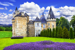 Fairy castles of France Stock Photography