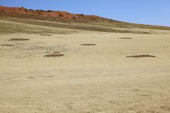 Fairy Circles. In Namib Naukluft NP, Namibia Royalty Free Stock Images