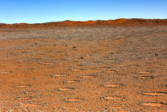 Fairy Circles - Namibia Royalty Free Stock Images