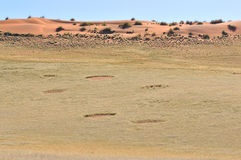 Fairy circles near Sesriem Stock Photos