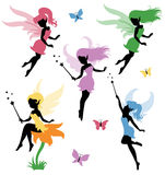 Fairy. Collections of vector silhouettes of a fairy Royalty Free Stock Images