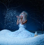 Fairy congelado Imagens de Stock