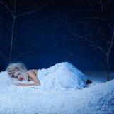 Fairy congelato Immagini Stock
