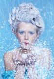Fairy congelato Fotografia Stock