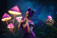 Fairy Coquette standing near the huge mushroom. Fantastic photo shoot.  Fairy Coquette standing near the huge mushroom. Background fairy forest, scenery shine Stock Photography