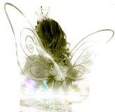 Fairy costume Stock Images