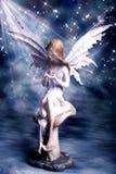 Fairy da mágica da noite Imagens de Stock Royalty Free