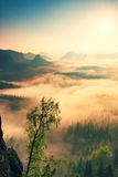 Fairy daybreak. Misty awakening in a beautiful hills. Peaks of hills are sticking out from foggy background Stock Photography
