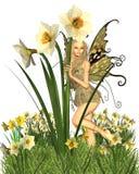 Fairy del Daffodil - 2 Fotografia Stock Libera da Diritti