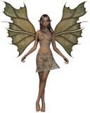 Fairy del terreno boscoso Fotografie Stock Libere da Diritti