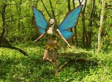 Fairy della foresta illustrazione vettoriale
