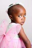 Fairy dentellare Fotografia Stock