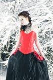 Fairy di inverno Fotografia Stock Libera da Diritti