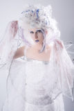 Fairy di inverno Immagine Stock