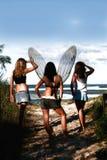 Fairy e amigos foto de stock royalty free