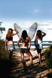 Fairy ed amici Fotografia Stock Libera da Diritti