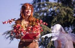 Fairy elf Stock Photography
