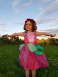 Fairy ereto Imagem de Stock Royalty Free
