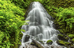 Fairy Falls, Columbia Gorge Royalty Free Stock Images
