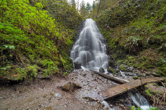 Fairy Falls in Columbia River Gorge Stock Photography