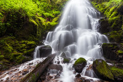 Fairy falls in Columbia River Gorge, Oregon.  royalty free stock image