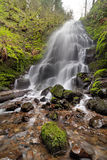 Fairy Falls in Columbia River Gorge in Spring Royalty Free Stock Photos