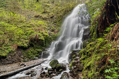 Fairy Falls in Spring Royalty Free Stock Photo