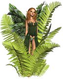 Fairy in the Ferns Stock Photo