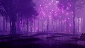 Fairy firefly lights in marshy night forest 4K