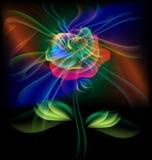 Fairy Flower Stock Photos
