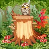 Fairy forest glade with cute owl sitting on stump Stock Images