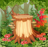 Fairy forest glade with drawing stump surrounded by toadstools Royalty Free Stock Photo