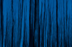 Fairy forest. At night, vertical blur effect Royalty Free Stock Images