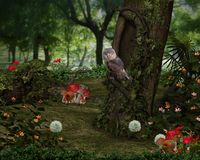 Fairy Forest Royalty Free Stock Photos