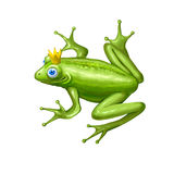 Fairy frog Stock Photo