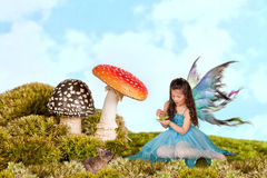 Fairy with frog prince Stock Photography