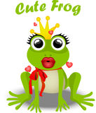 Fairy frog princess. Very high quality original trendy vector illustration of frog princess Royalty Free Stock Images