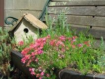 Fairy garden. A hidden fairy home among creeping flock sitting on an abandon bench stock image