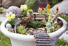 Fairy Garden In A Flower Pot Outdoors Stock Photo